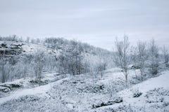 Berg bij de winter Stock Afbeelding