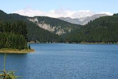 Berg blå sjö i sommarskog Arkivfoto