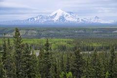 Berg Blackburn Alaska Stockfoto