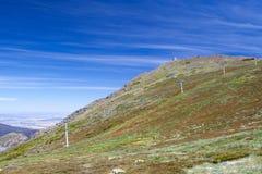 Berg Buller im Sommer Stockbilder