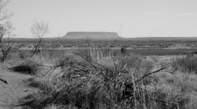 Berg Conner för tabellöverkant i vildmark arkivbild