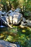 Berg in Corsica, riviercanion Stock Afbeeldingen