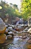 Berg in Corsica, riviercanion Stock Foto's