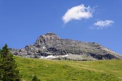 Berg Cuneaz (das Aostatal) Testa Grigia im Sommer Stockbild