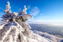 Berg in de Kaukasus Stock Foto's