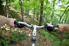 Berg, der in den Wald radfährt Lizenzfreie Stockfotografie