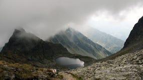 Berg, der in den Wolken sich versteckt Lizenzfreie Stockfotos
