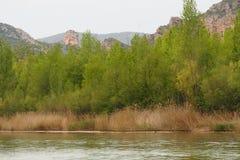 Berg des Montsenys, Lerida lizenzfreies stockfoto