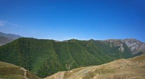 Berg die met bos wordt behandeld Stock Foto