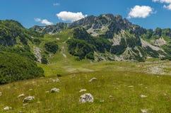 Berg Durmitor Arkivfoton