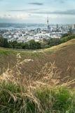 Berg Eden Crater mit Stadt im Hintergrund Lizenzfreies Stockfoto