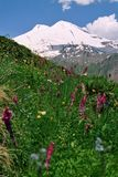 Berg Elbrus. Stock Afbeeldingen