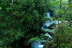 Berg Emei - Wasserfall Stockfoto