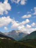 Berg en bos Stock Afbeelding