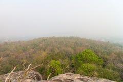 Berg en bos met de mist Royalty-vrije Stock Foto