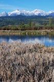 Berg en rivier Stock Fotografie