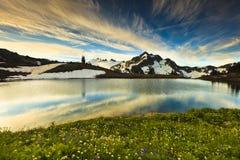 Berg en Wildflowers Stock Afbeeldingen