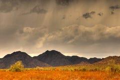 berg för 106 öken Royaltyfri Fotografi