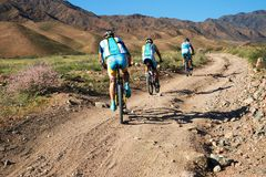 berg för affärsföretagcykelkonkurrens Arkivfoto
