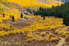 berg för colorado fallliggande Fotografering för Bildbyråer