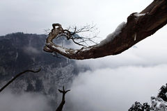 berg för emei 8 Royaltyfri Fotografi