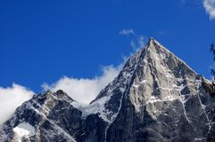 berg för fyra flickor Royaltyfri Fotografi