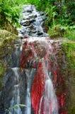 berg för klein för africa udddrakenstein nära paarl sköt den västra södra vattenfallet Royaltyfria Foton