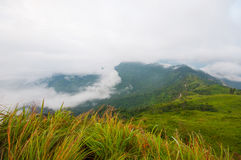 Berg för Phu Chifa, Chiang Rai Thailand Royaltyfri Foto