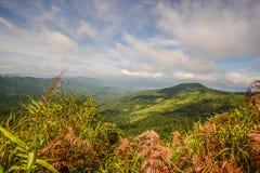 Berg för siktspunkt av Phu Soi Dao Nationnal Park Royaltyfri Foto