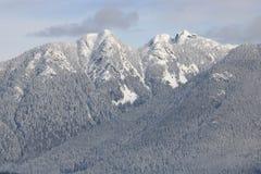 Berg för Vancouver ` s Northshore i vinter Royaltyfria Bilder