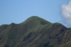 Berg för vit elefant Royaltyfri Bild