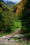 berg förstenas trail Arkivbild