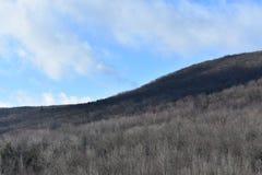 Berg förutom Scranton, Pennsylvania royaltyfria bilder