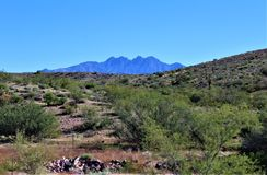 Berg f?r fyra maxima in, Tonto nationalskog, Arizona, F?renta staterna royaltyfri bild