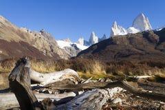 Berg Fitz Roy i Patagonia arkivfoton