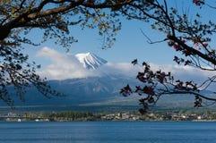 Berg Fuji Stockfotografie