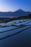 Berg Fuji royalty-vrije stock foto's