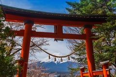 Berg Fuji in de lente, Kersenbloesem Sakura royalty-vrije stock foto's