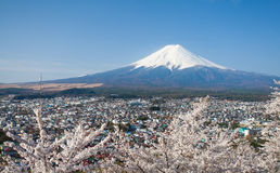Berg Fuji en sakura van de kersenbloesem in de lente Stock Foto