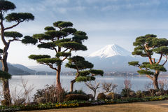 Berg Fuji fujisan vom Kawaguchigo See mit Garten im foreg Stockfotos