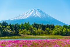 Berg Fuji met Onscherpe voorgrond van roze mossakura Royalty-vrije Stock Afbeeldingen