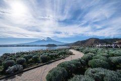 Berg Fuji und Kawaguchiko See bei Oishi parken, Japan Lizenzfreies Stockfoto
