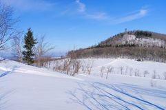 Berg Geisingberg in de Winter Stock Foto