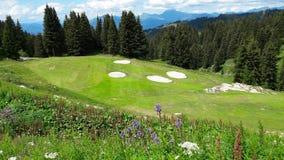 Berg golfdomstol royaltyfri bild