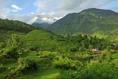 Berg groen Himalayagebergte, kangra India stock afbeeldingen