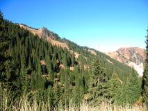 Berg, hemel, bomen Royalty-vrije Stock Foto