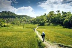 Berg het biking in Nepal stock foto