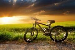 Berg het biking onderaan heuvel die snel op fiets daalt Stock Foto