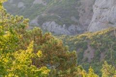 Berg Het mooie Landschap van de Berg Stock Fotografie
