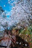 Berg Huang efter insnöad vinter royaltyfri fotografi